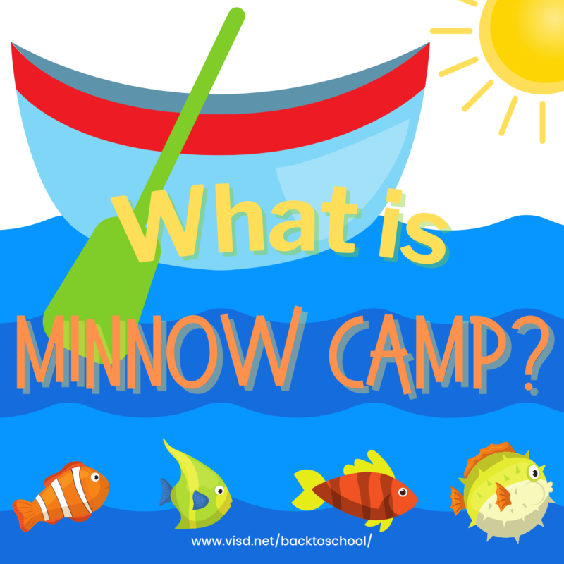 minnow camp