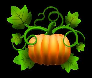 pumpkin-2033907_1920.png