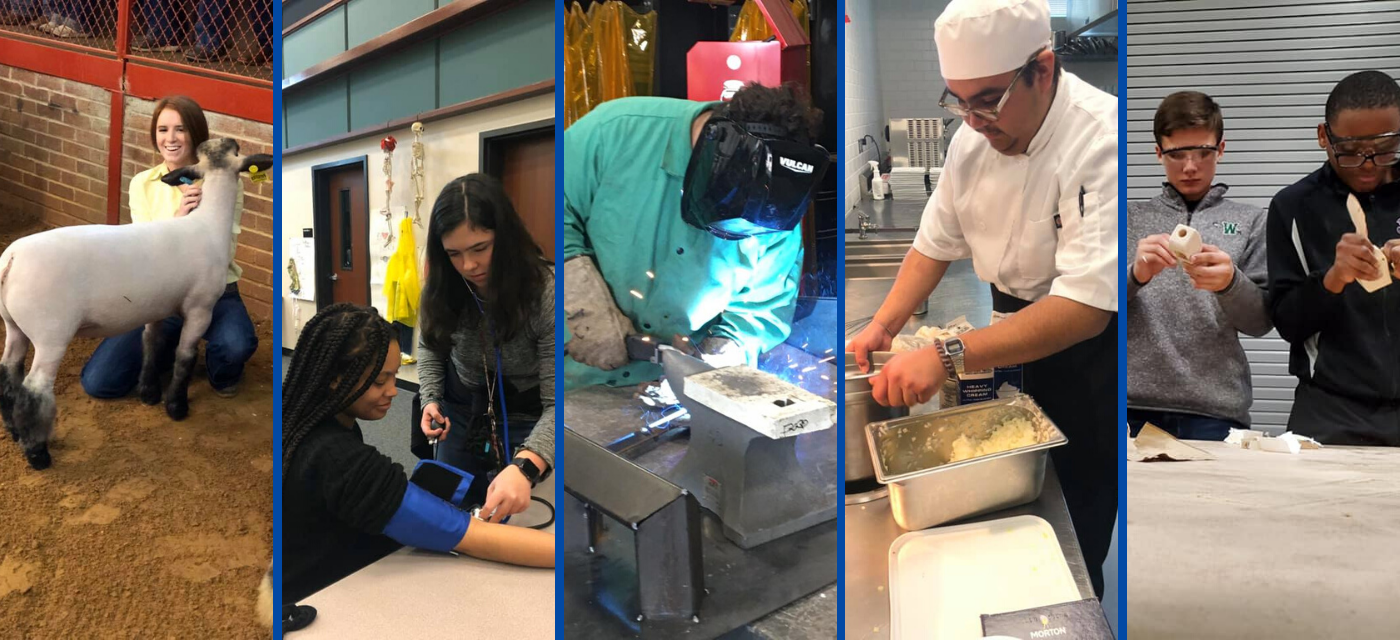 collage of cte students; girl with her lamb in an arena; 2 girls learning to take blood pressure; boy welding; boy preparing food; boys sanding their wooden projects