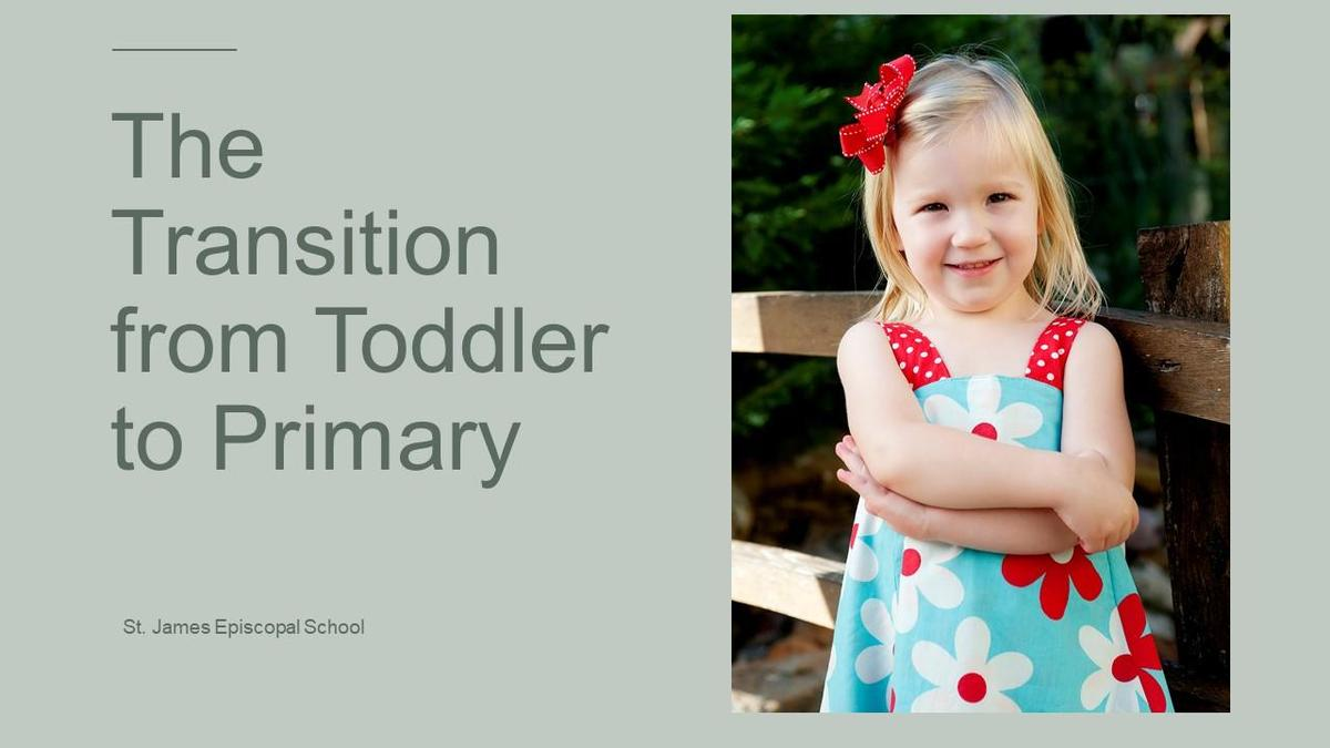Toddler Transition to Primary