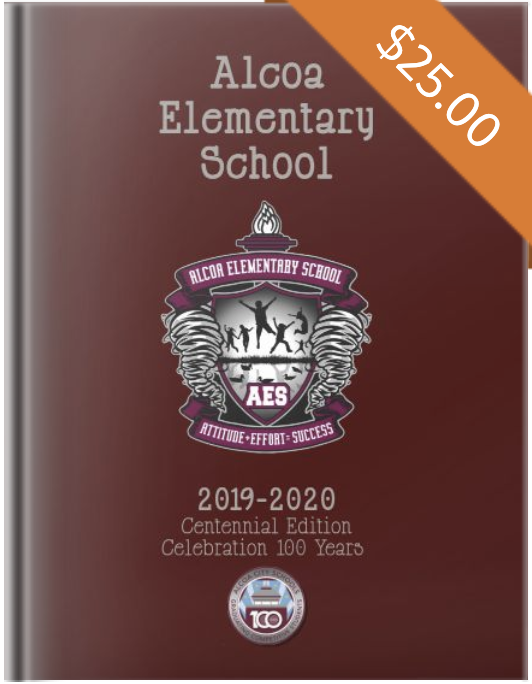 aes yearbook 2019-20