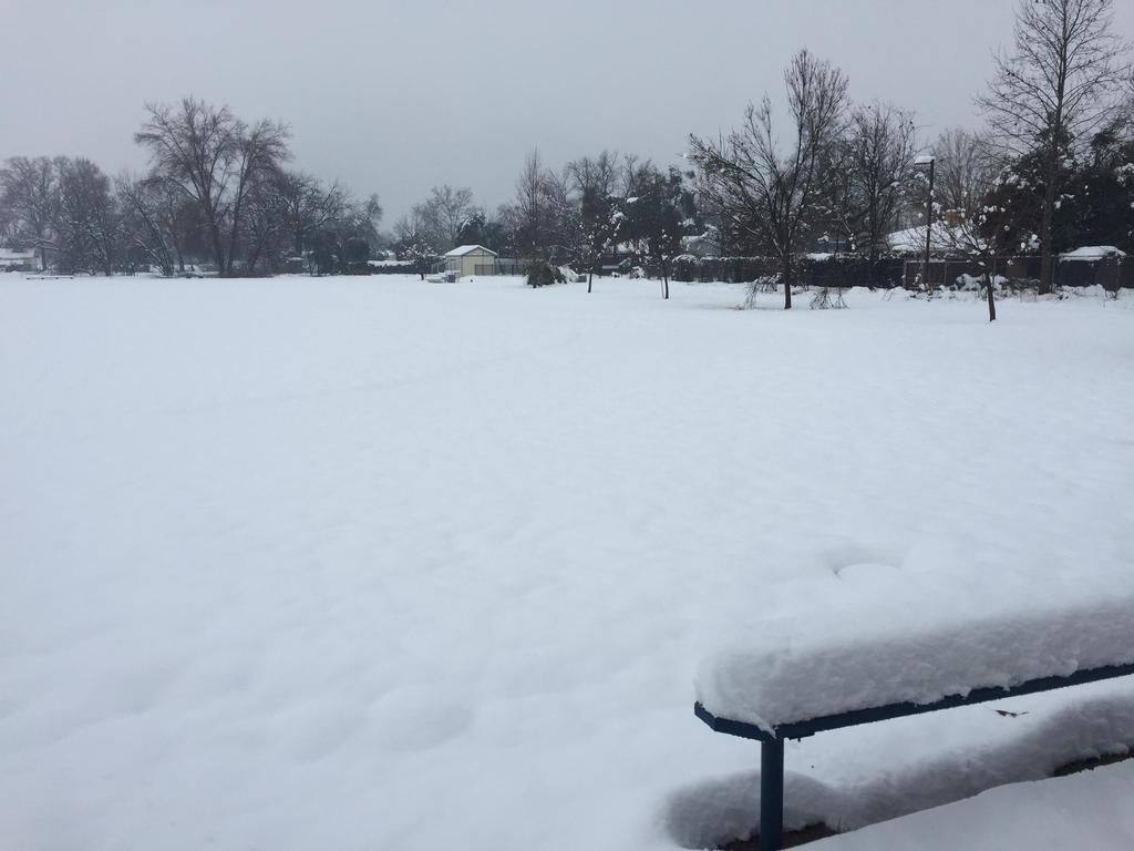 Snow Day Pacheco Feb.13 (South)