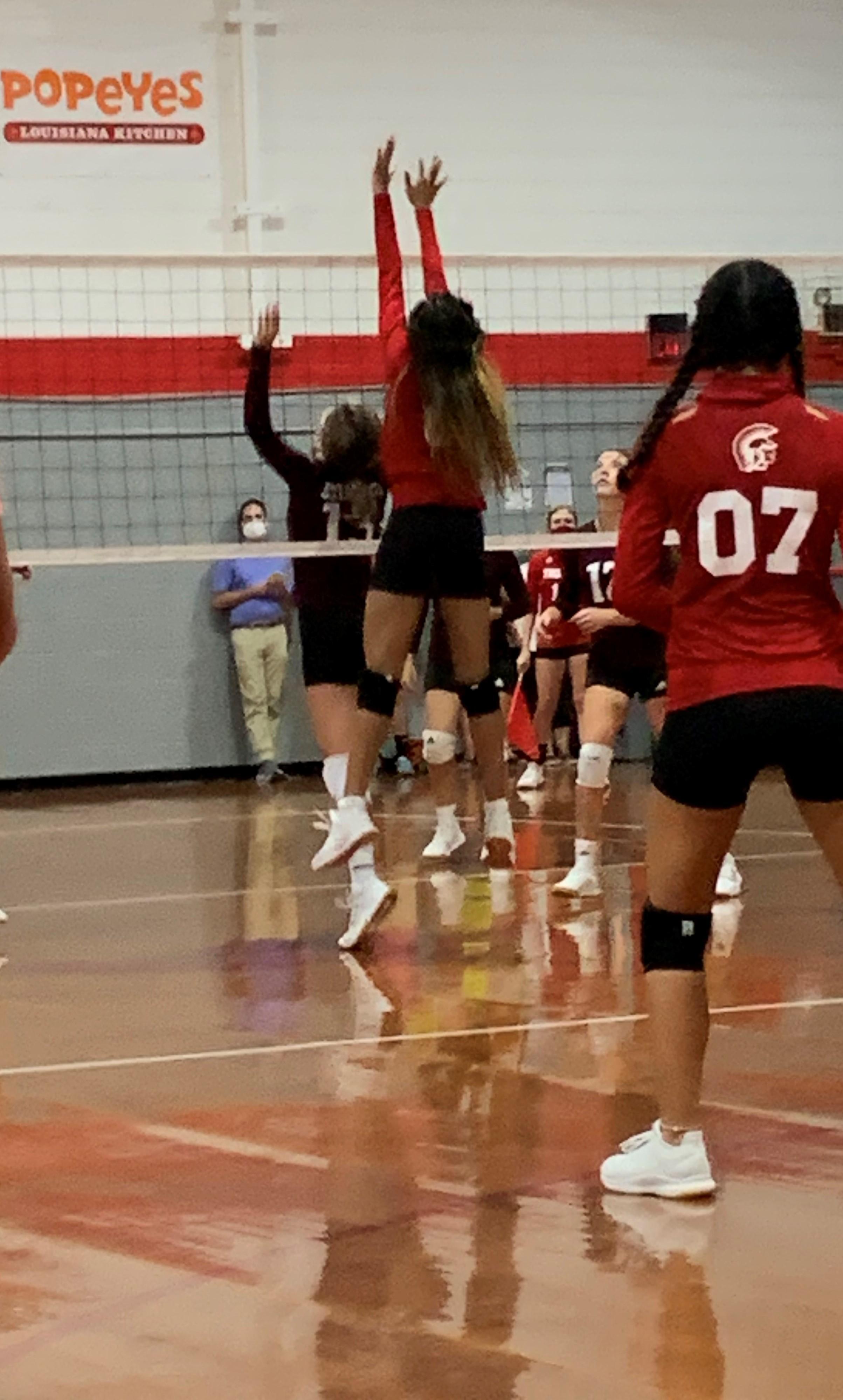 NEHS Volleyball Photo