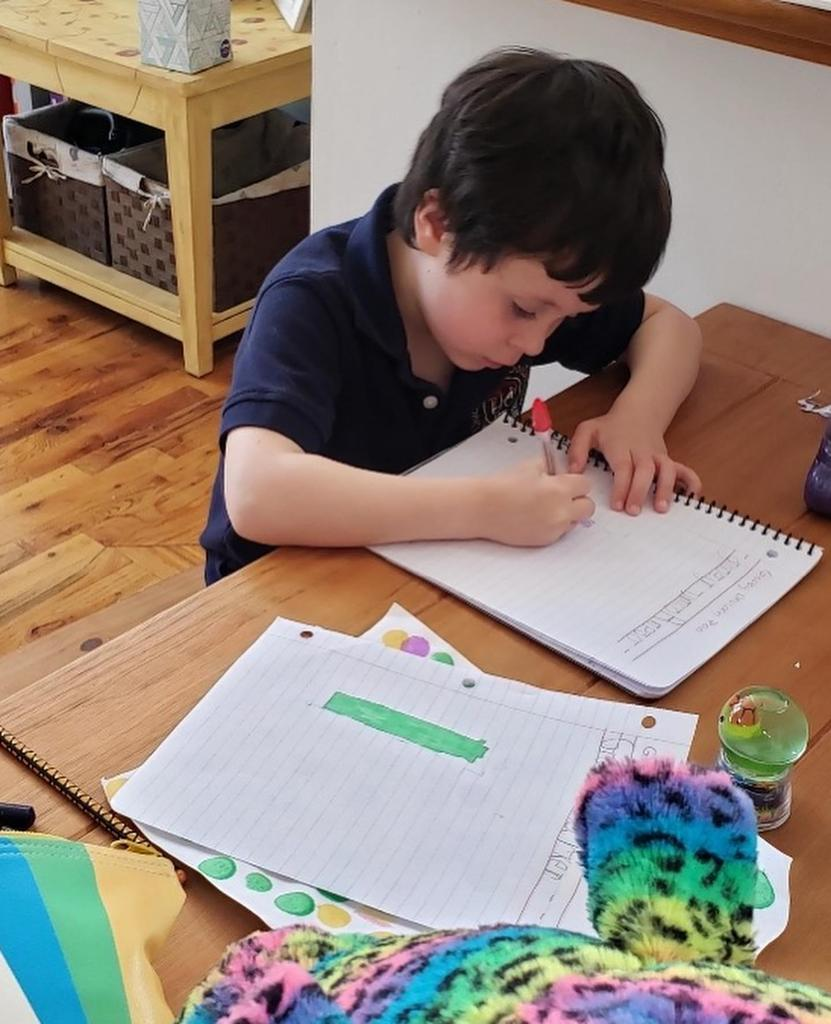 boy writing in his journal