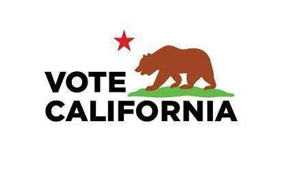 Vote California / California Flag Insignia