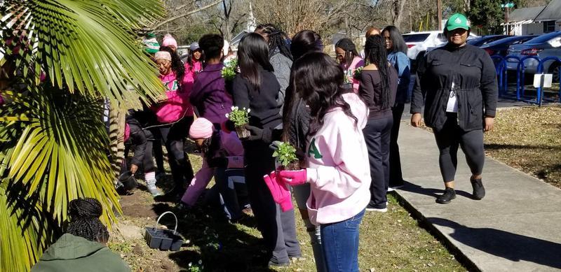 Ladies of IOTA KAPPA Chapter of AKA planting flowers at MBAC.