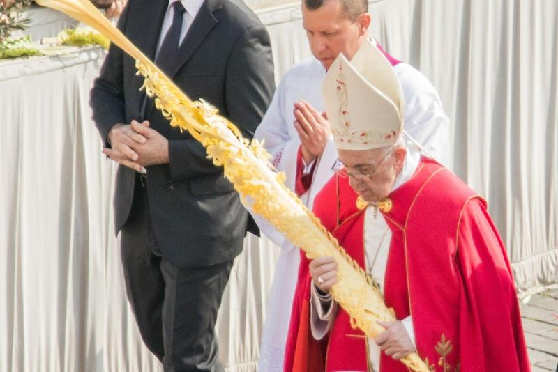 No distribution of palms on Palm Sunday and Liturgical Information Regarding Holy Week Featured Photo