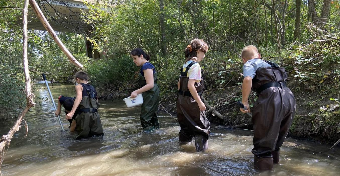 Insect class students take a field trip to the nearby creek to study water insects.