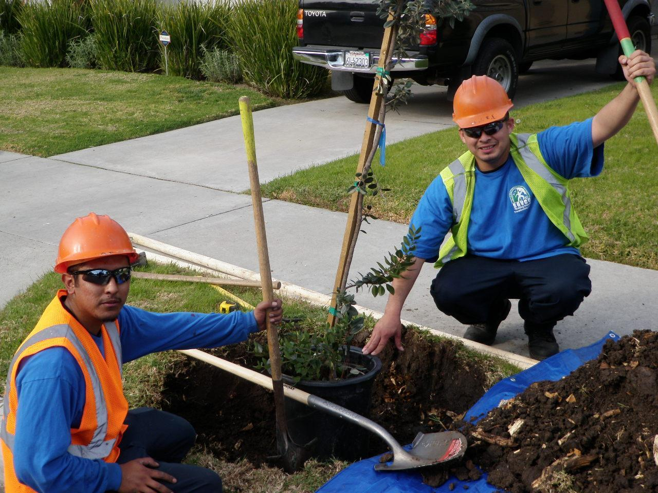 SGVCC students plant a tree