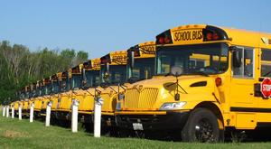 a line of yellow school busses