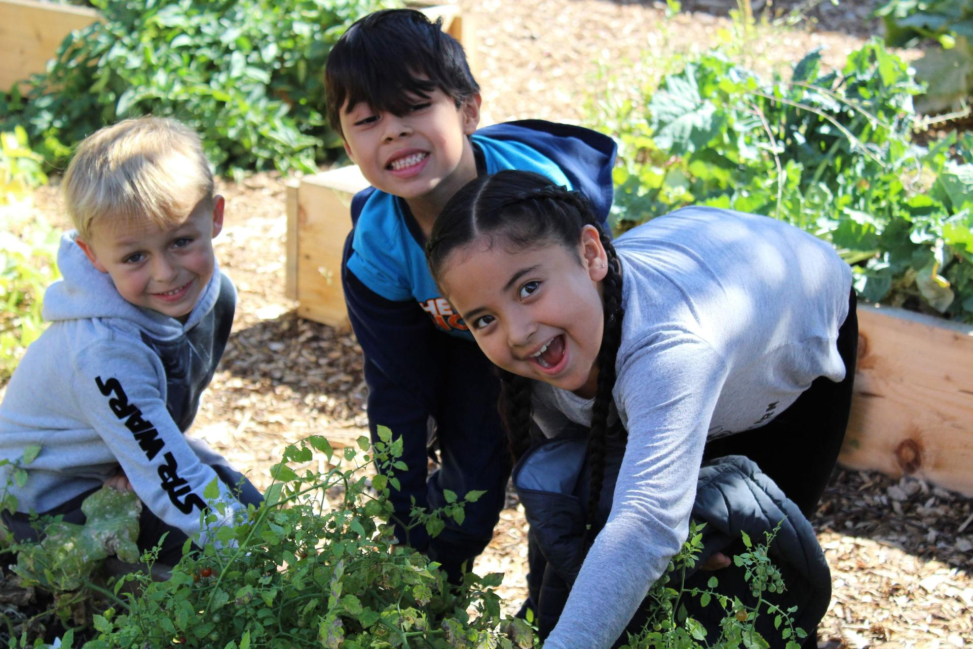 School Garden with students