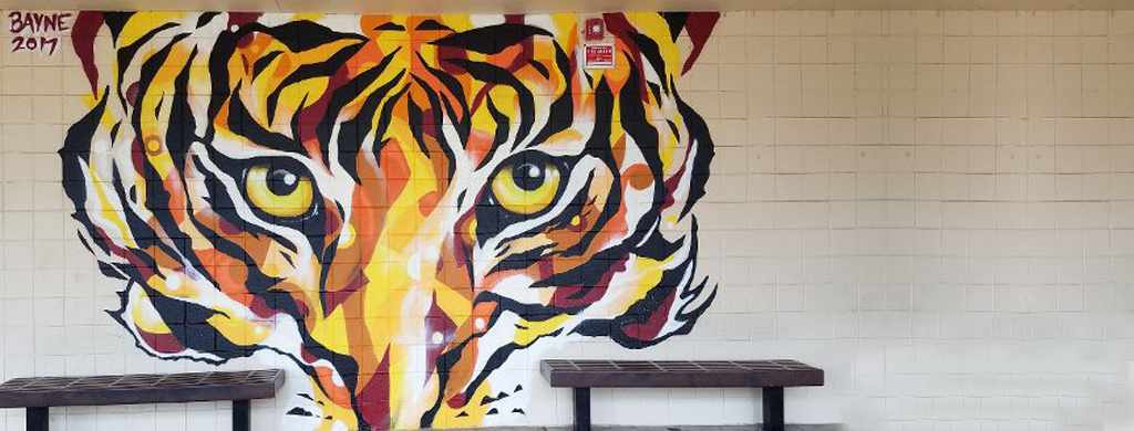 Oaklea Middle School Tiger Mural on front of school.