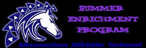 Summer Enrichment Icon