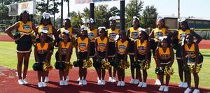 Denman Junior High School Cheer Team 2019-2020