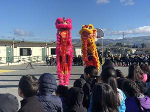 Chinese dragons performing.