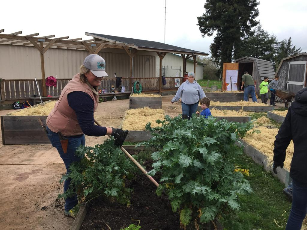 families helping weed garden beds