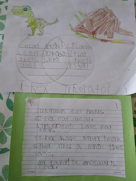 dinosaur worksheet with drawing