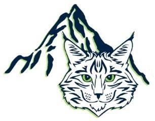 Lynx and mountain