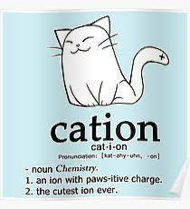 Cations!