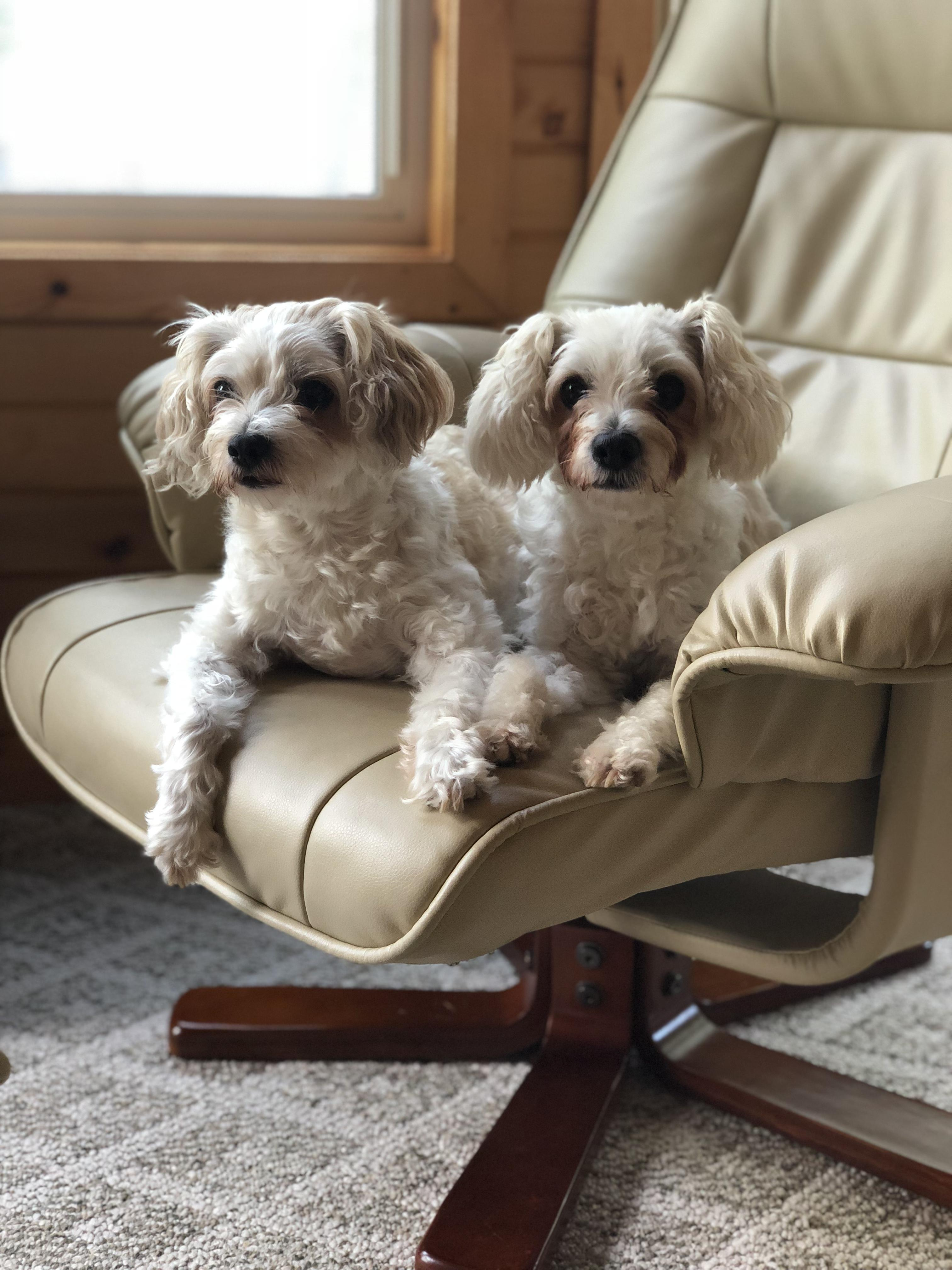 Charley & Annie