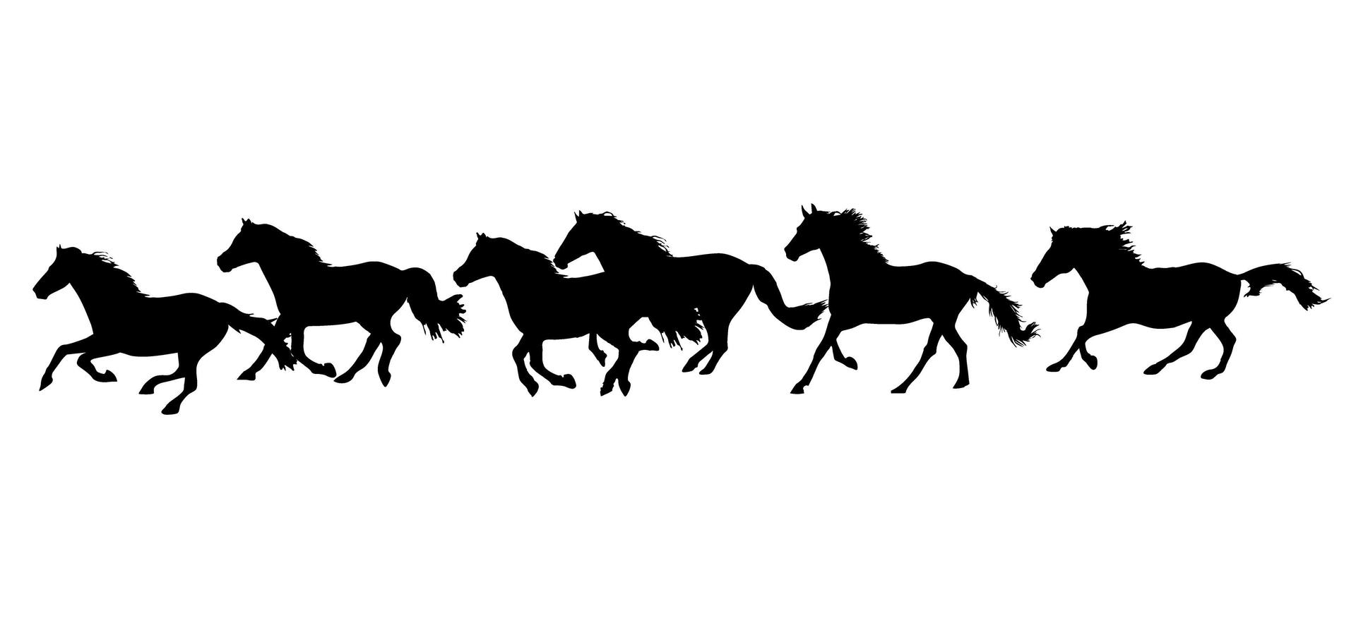 Silhouette of horses running