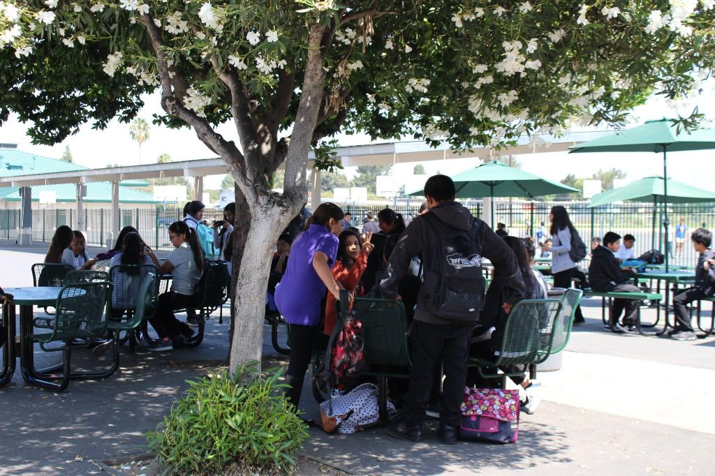 students standing and sitting near tables and trees on the Bridges Academy campus