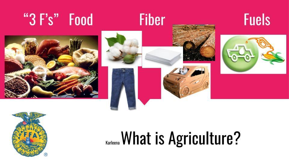 3 F's of Agriculture  Food, Fiber Fuel