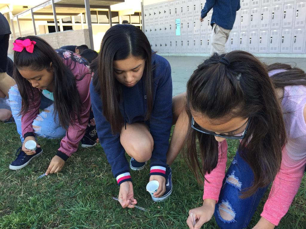 science lesson outside