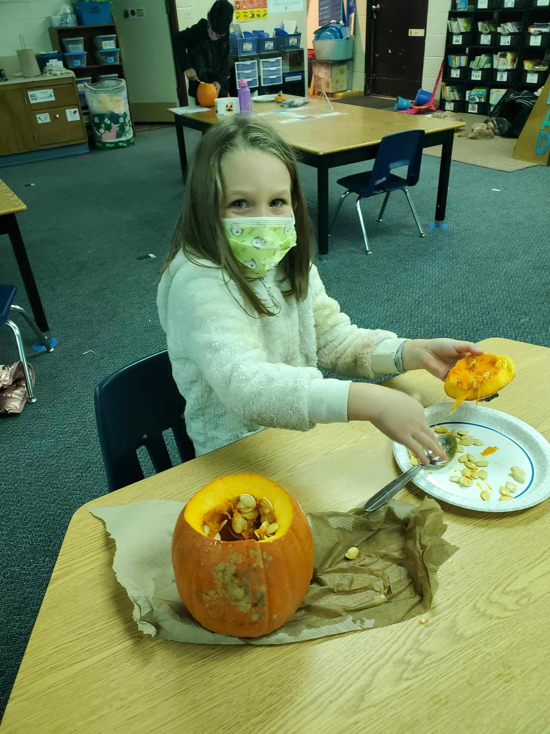 student dissecting pumpkin