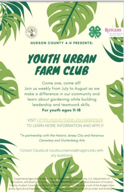 Summer 4-H Youth Urban Farm Club - for ages 11-18 Featured Photo