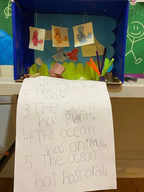 Ocean fish diorama