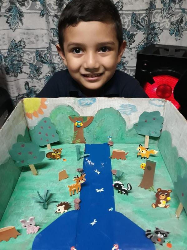Student with forest diorama
