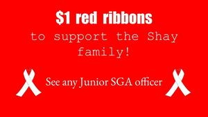 Red Ribbons for Sale