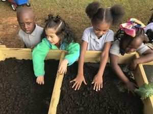 Northeast Elementary students planting in the salad table that was donated to them by East Mississippi Master Gardeners.