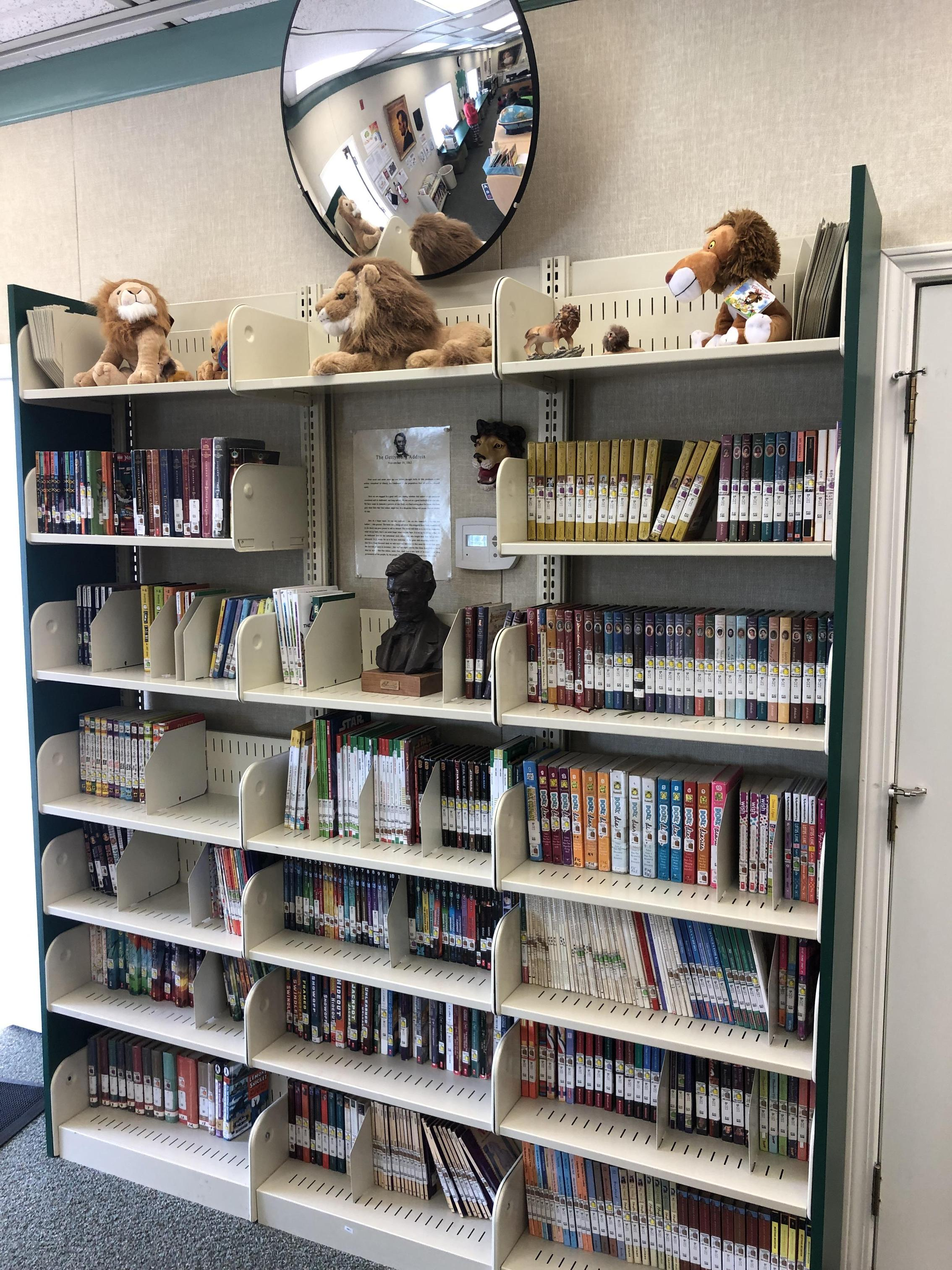 Bookshelves in library