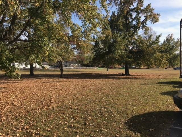 Trees in front of school