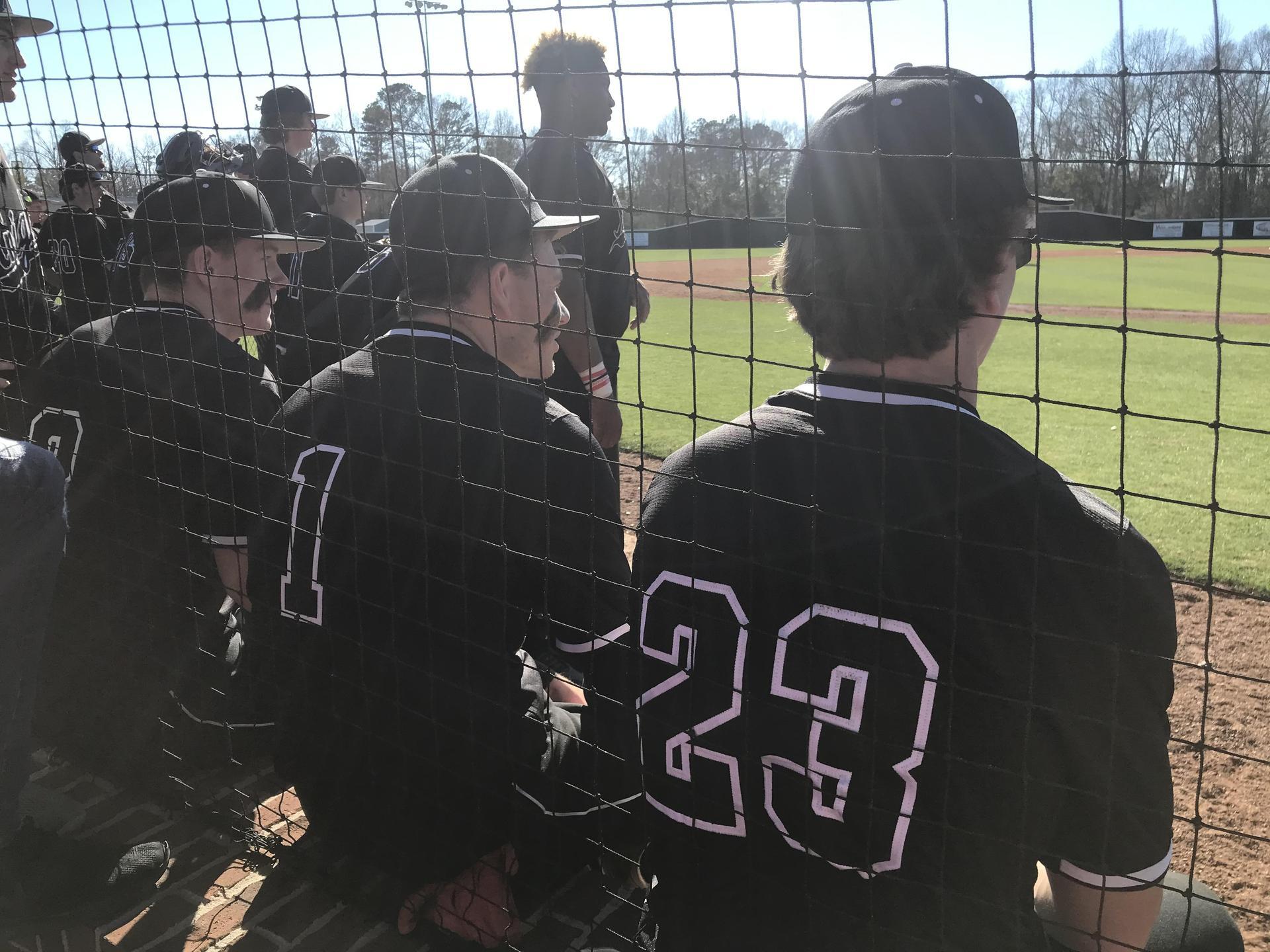WLHS Baseball Team Game Action