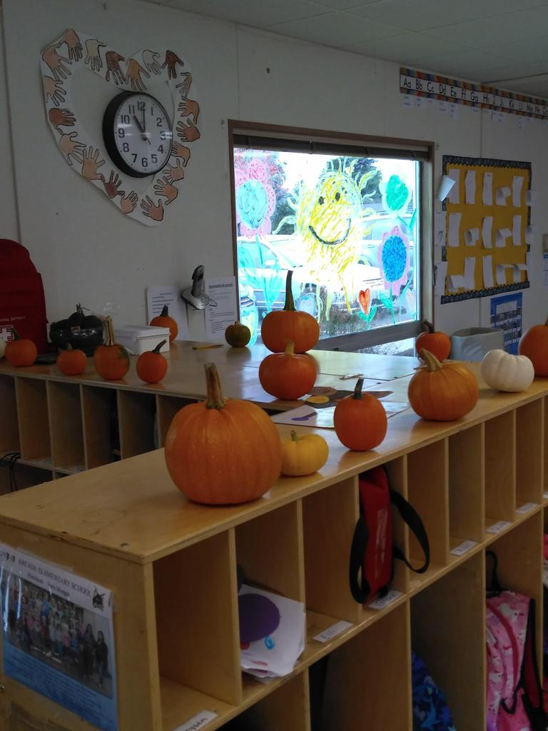 Pumpkins sitting on top of school cubbies