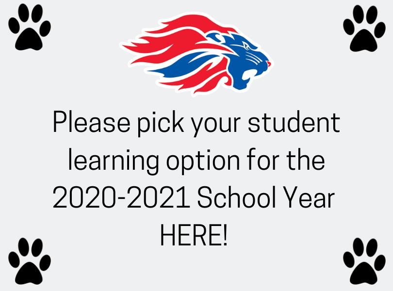 School Options