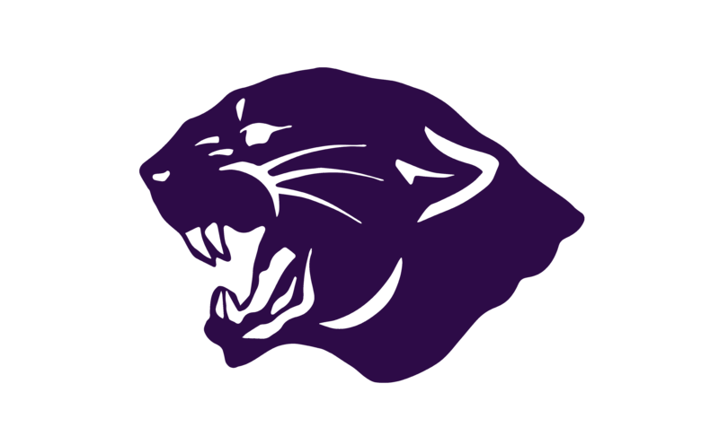 A purple Panther Head