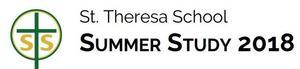 STS Summer Study