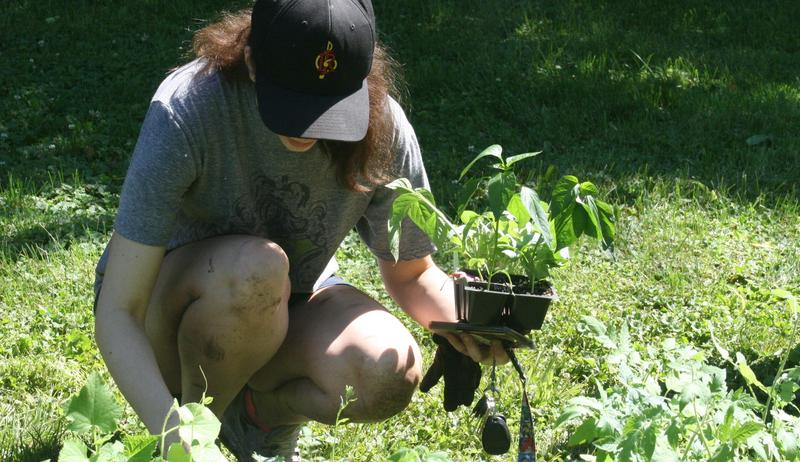 Students Get a Lesson On Gardening and Giving Back Featured Photo