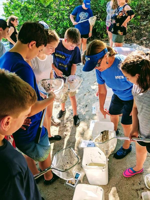 Edison 7th graders use nets to capture marine life in an estuary of the Gulf of Mexico to sort the animals by type, as part of a visit to the Mote Marine Laboratory during a STEM field trip to Florida.