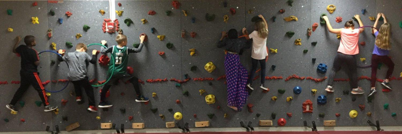 EWA Climbing Wall