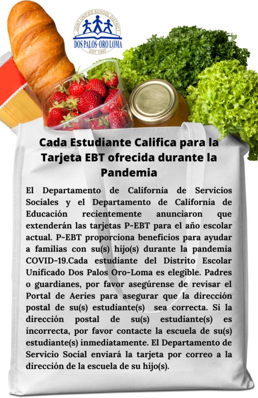 Pandemic EBT Card (Spanish) REV2.png