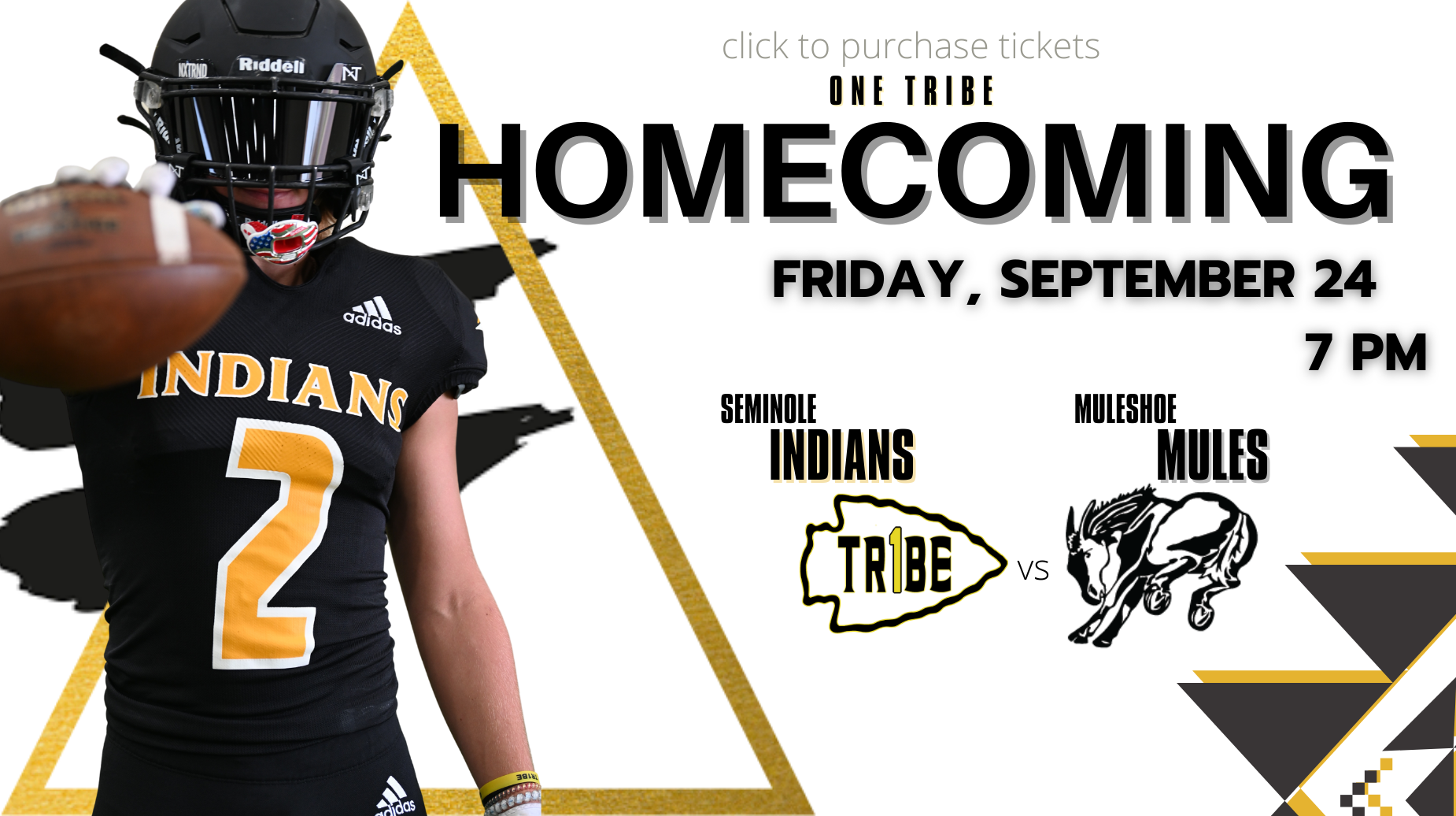 homecoming graphic for tickets link