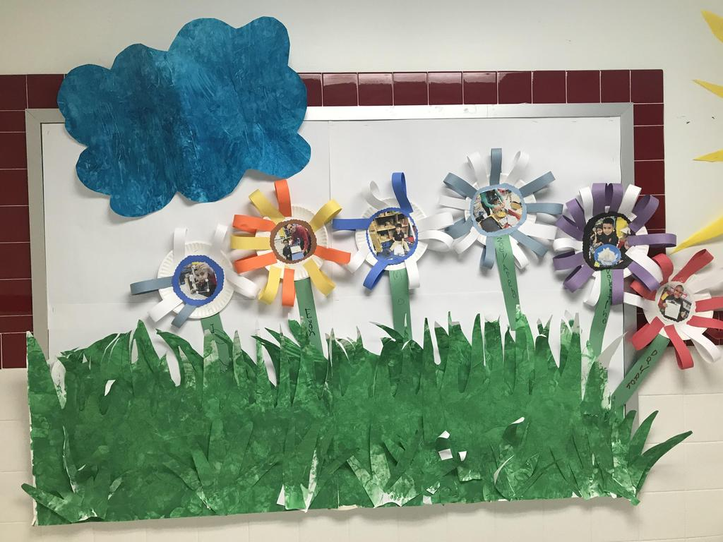 spring flower picture display