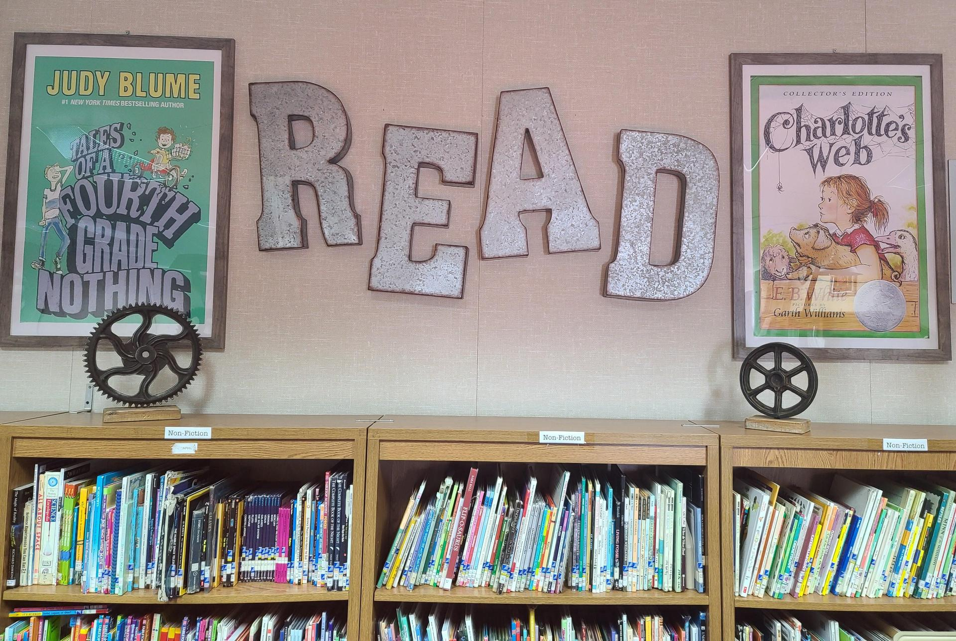 Library Display Pic