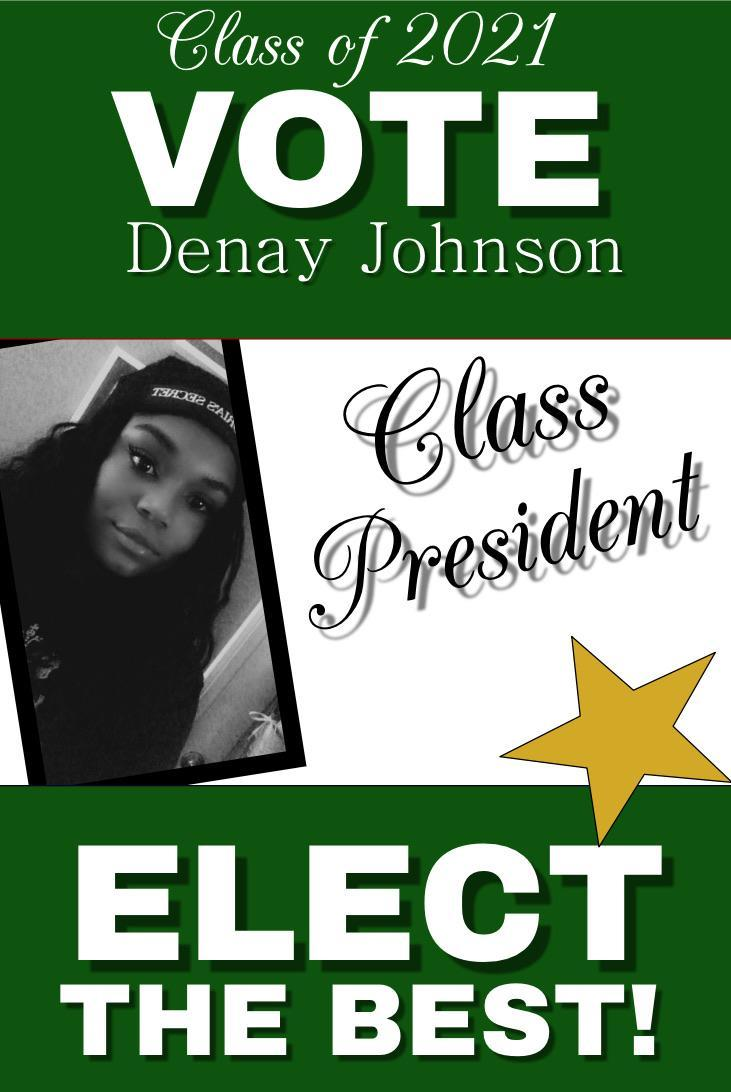 Denay for President Campaign Flyer