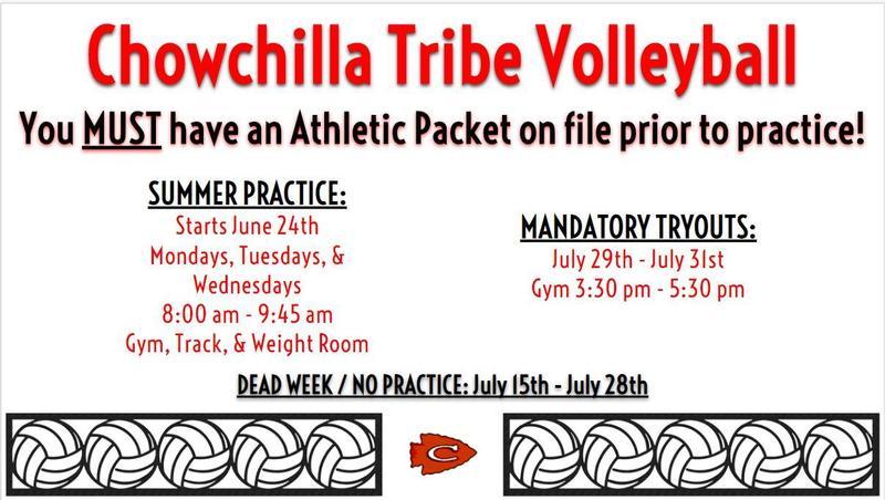 Summer Volleyball Info